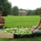 The Mount Holyoke College Student Garden Project