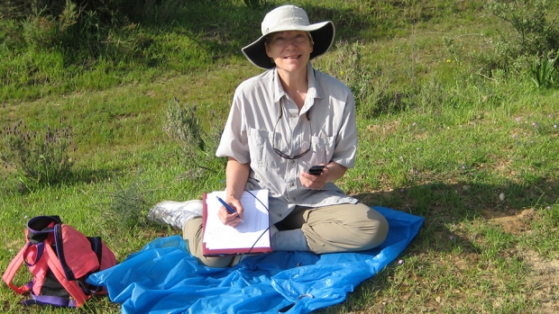 Professor of Psychology and Education Karen Hollis doing field research on ant behavior.