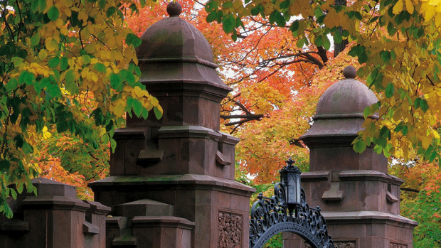 Photo of the top of the Mount Holyoke gate with fall leaves surrounding it