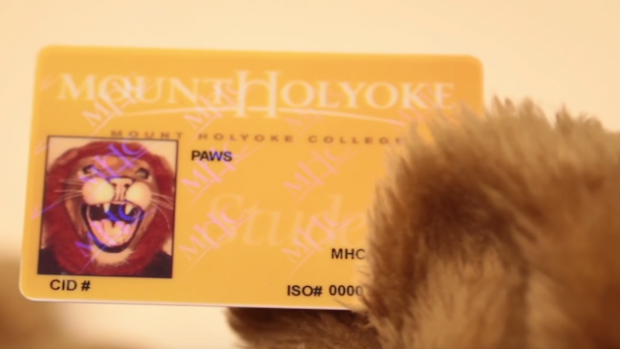 Image of Paws ID card