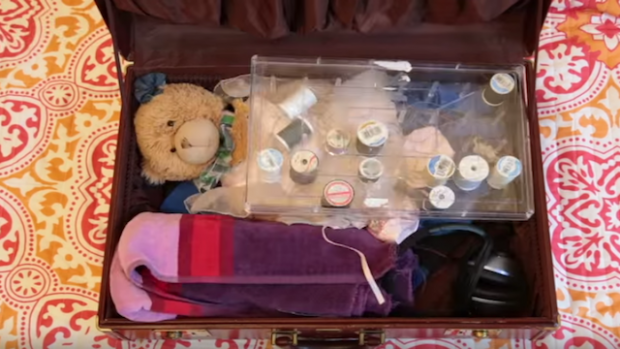 Image of Paws suitcase