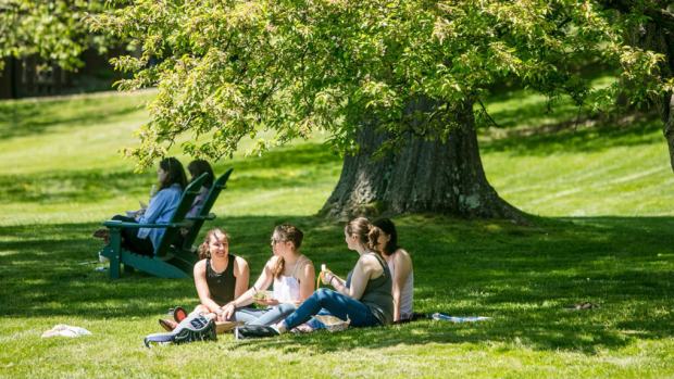 Photo of a group of students sitting on the lawn talking