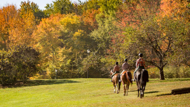 Photo of three Mount Holyoke College students riding horses