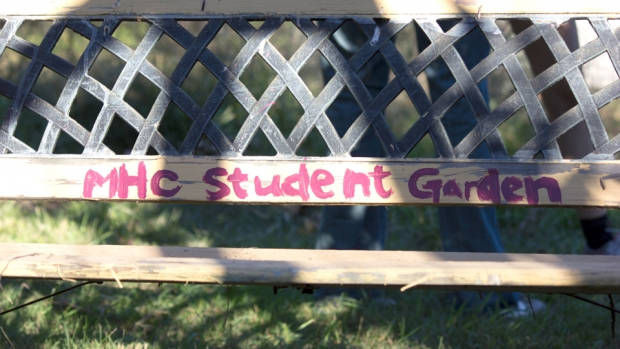 Image of bench at MHC Student Garden.