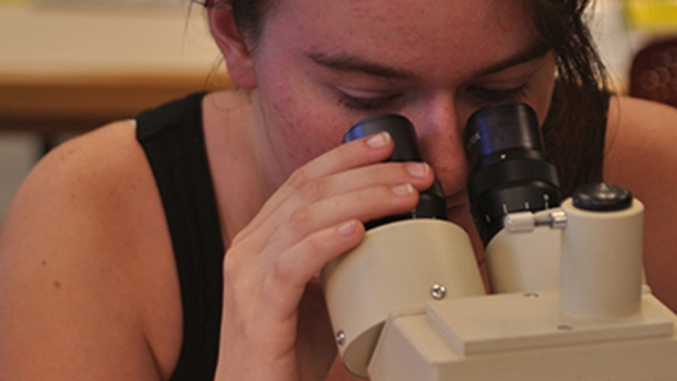 Photo of a student looking through a microscope