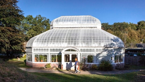 Photo of Talcott Greenhouse
