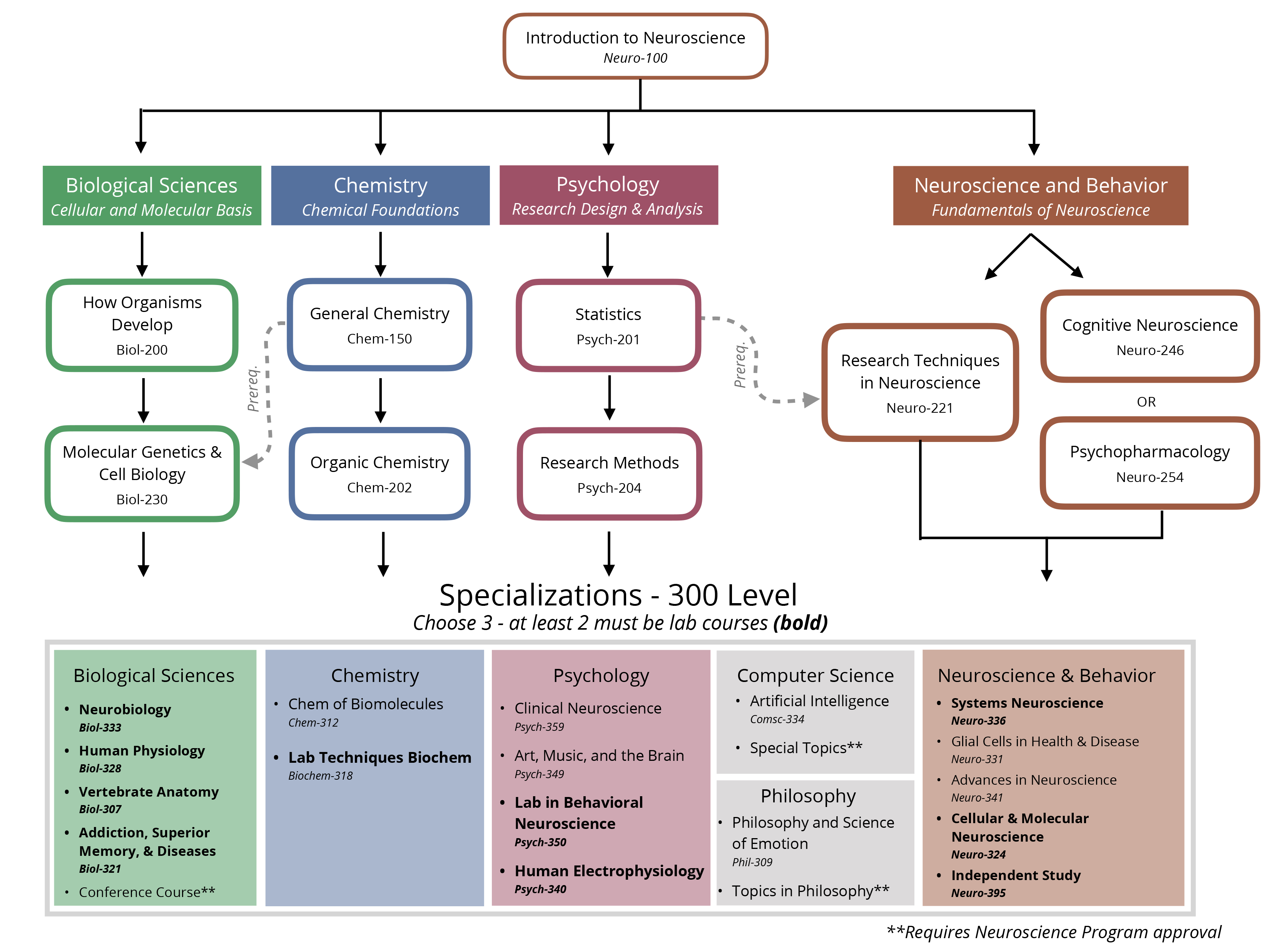 Neuroscience Flow Chart for Biological Sciences, Chemistry, Psychology, and Neuroscience and Behavior