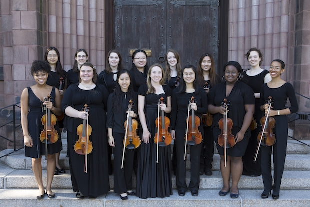 2017 Violin Section