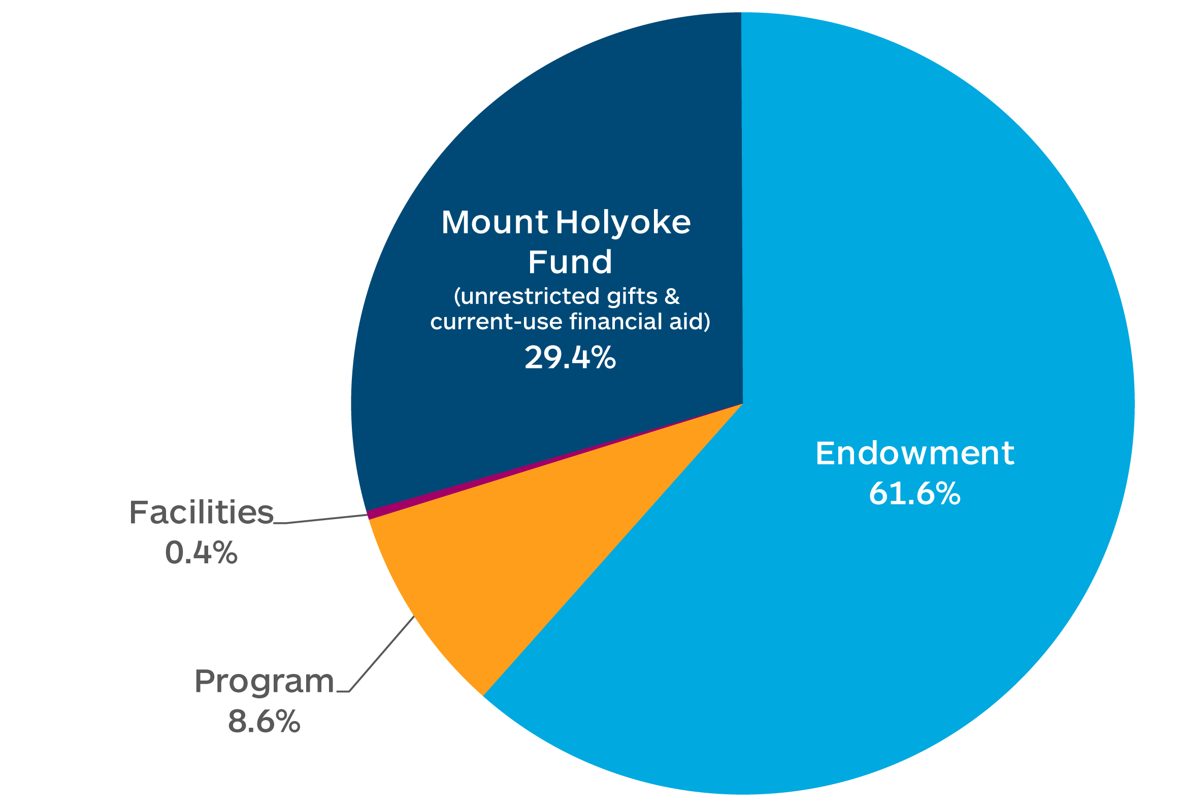 Gifts by Purpose: Endowment 61.6%, Mount Holyoke Fund 29.4%, Programs 8.6%, Facilities 0.4%