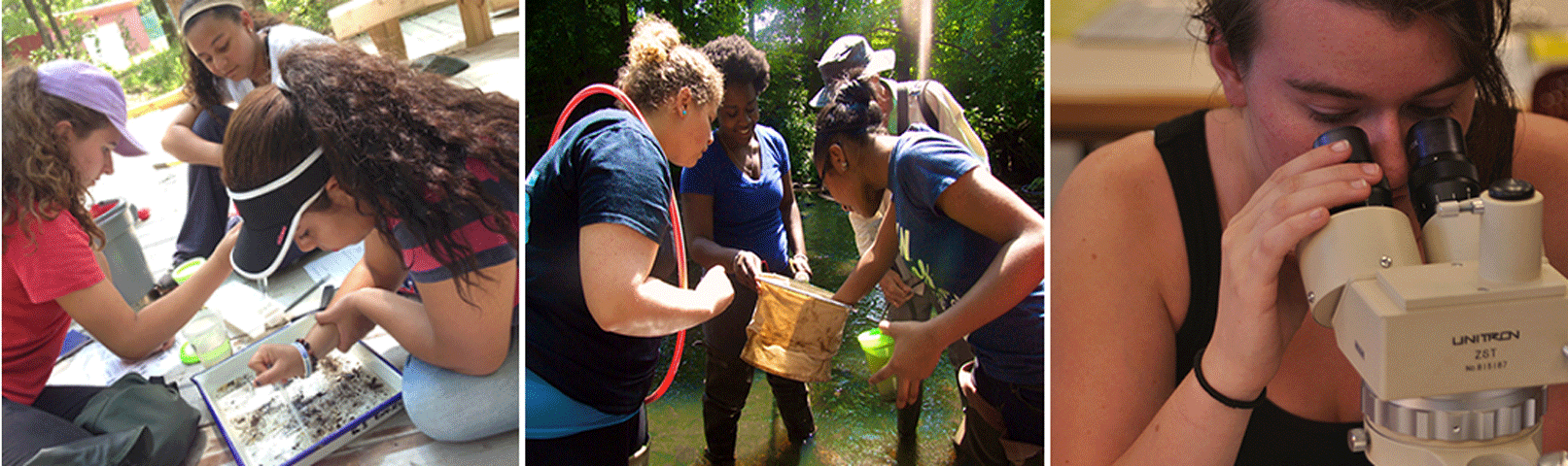 Montage photo of high school students taking part in the Restoration Ecology Summer Scholars Program