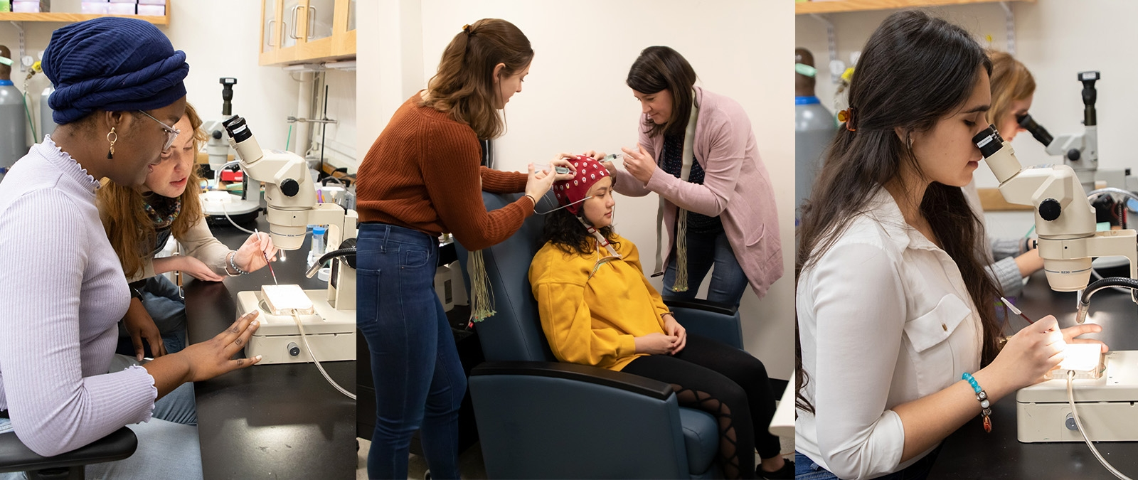 Groups of students participating in Neuroscience research labs