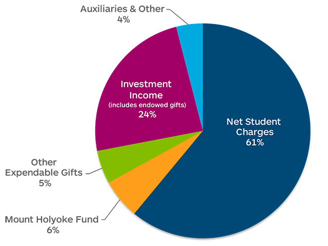Revenue Sources: Net Student Charges: 61%, Auxiliaries & Other: 4%, Investment Income (includes endowed gifts): 24%, Other expendable gifts: 5%, Mount Holyoke Fund: 6%