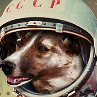 Russian dog in space