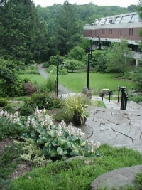 View from the top of the Heckel Staircase Garden