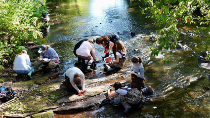 Students learning about the environment on campus outdoors in a stream