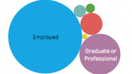 Grpahic of colored circles depicting types of outcomes: employed, graduate of professional education, etc.
