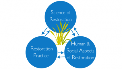 Graphic displaying the cyclical nature of integrataing science, practice and social dimensions in restoration
