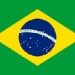 This is a cropped image of the flag of Brazil.